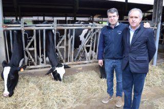 Badiola Holstein: La ganadería de vacuno de leche más premiada de España