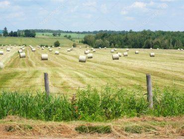 Piden acelerar a supresión de agricultores xubilados da PAC