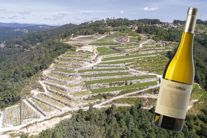 Un Ribeiro, Finca Viñoa, elegido el mejor vino blanco de España 2019