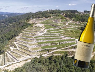 Un Ribeiro, Finca Viñoa, elixido o mellor viño branco de España 2019
