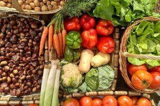 Informe sobre a agricultura ecolóxica en España: primeiro país da UE e cuarto do mundo en hectáreas