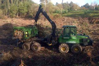 Equipo de recollida de biomasa de Greenalia en monte.