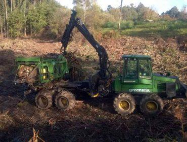 Greenalia considera que su planta de biomasa mejorará las rentas de los propietarios forestales hasta un 10%