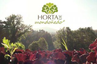 Novo vídeo promocional dos produtores de horta de Mondoñedo