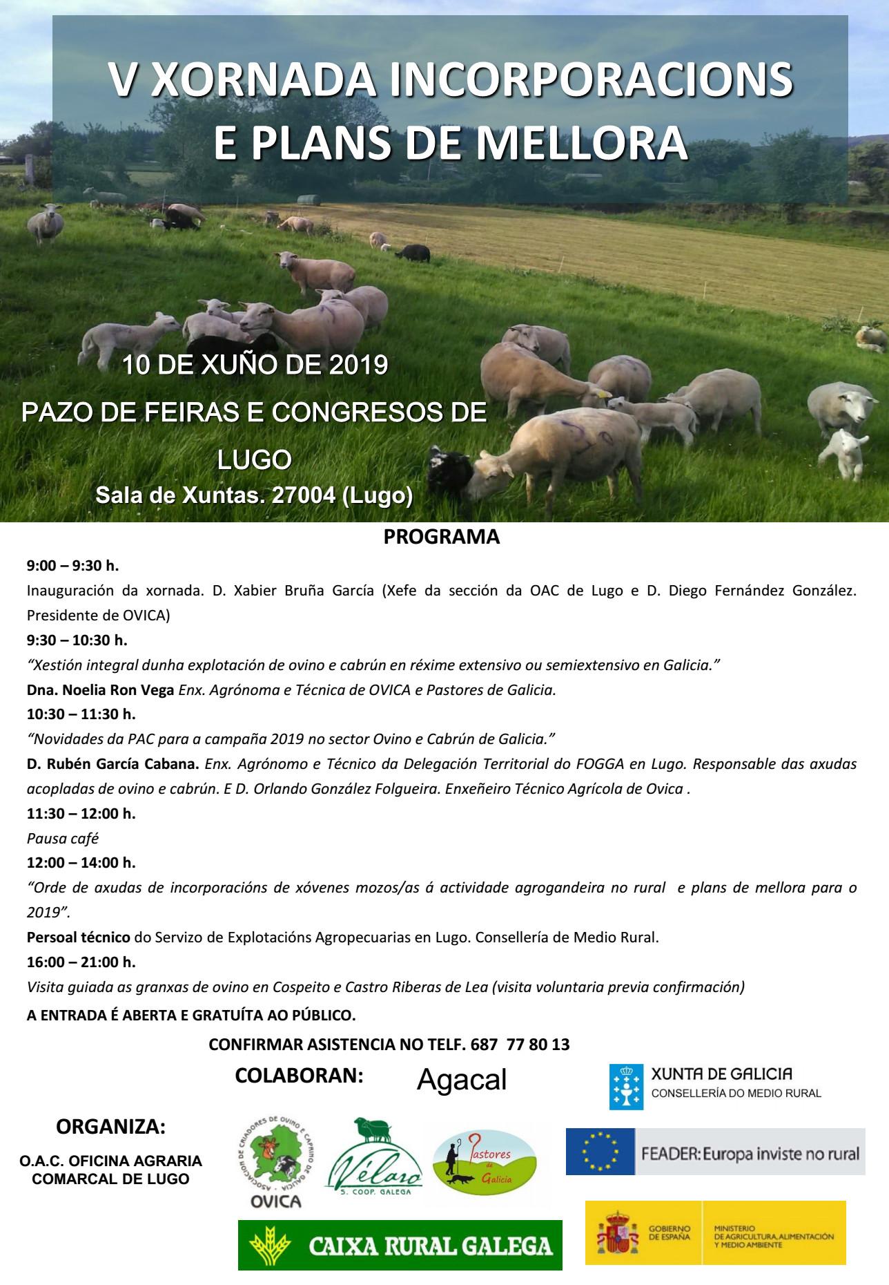 ovica programa 19