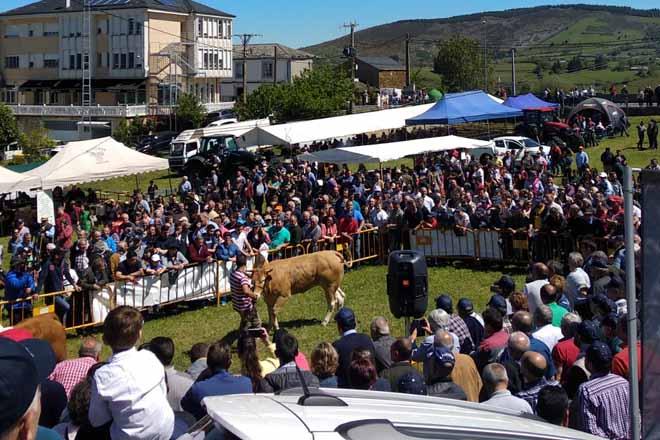 Gran afluencia na poxa celebrada en Cervantes.