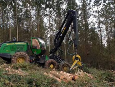 A cadea da madeira reduce actividade pola baixada da demanda