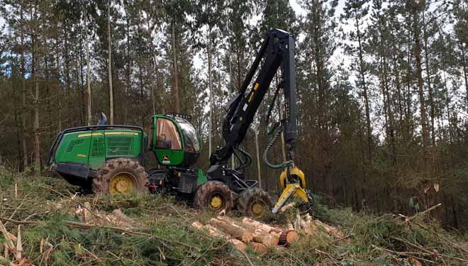 Procesadora forestal John Deere.