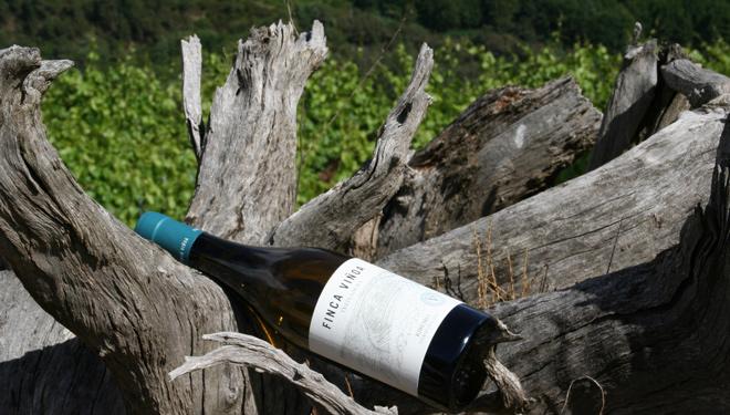 Botella-Finca-Vinoa-