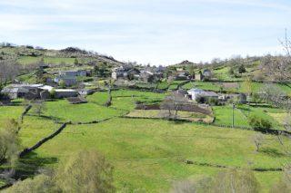 Fondos Next Generation: ¿Como solicitar base territorial para un proxecto agrícola ou gandeiro en Galicia?