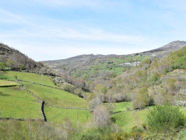 A redución das axudas para a montaña supón unha perda de 3.800 euros por granxa