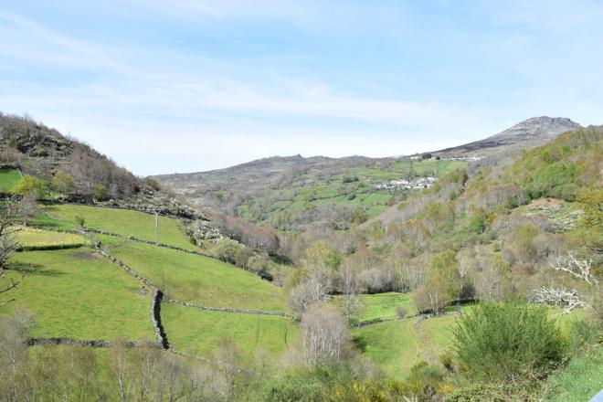 La reducción de las ayudas para la montaña supone una pérdida de 3.800 euros por granja
