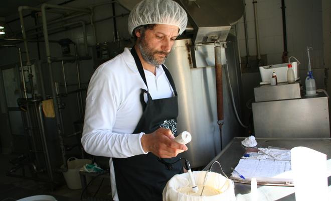 Germán durante la elaboración de los quesos.