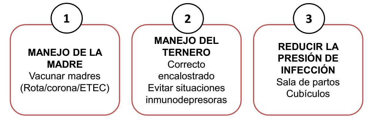 DIARREA BECERROS PABLO DIAZ 7