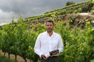 Finca Viñoa: Así se logra el mejor vino blanco de España