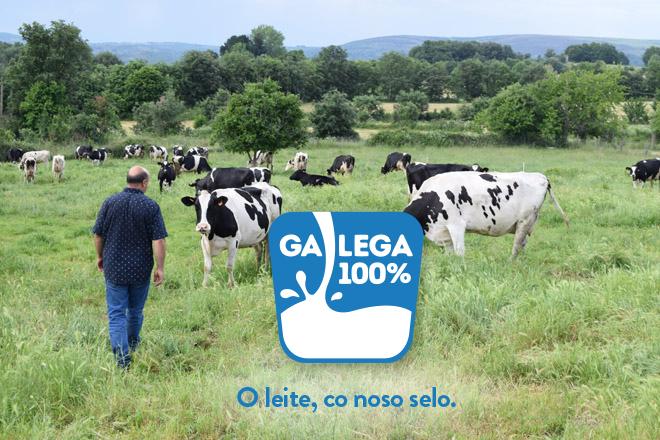 Galega 100%: El sello de garantía de la leche de Galicia