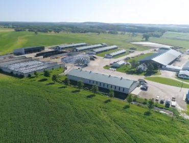 Crave Brohters Farm: Una granja de Estados Unidos que apuesta por dar valor a su leche