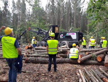 Vídeo: Forest Pioneer presenta a nova procesadora Logset 8H GTE Hybrid en Galicia
