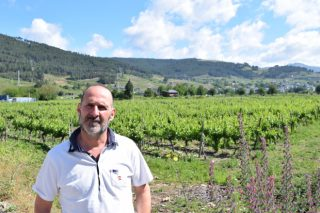 """""""Temos solicitudes para plantar viñedos de 30 ou 40 hectáreas en Valdeorras, e cada vez a máis altura"""""""
