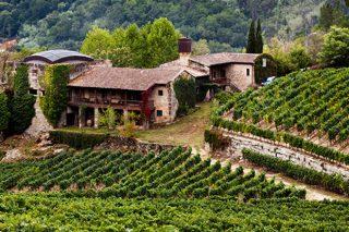 Convocadas as axudas da Xunta para investimentos no sector vitivinícola