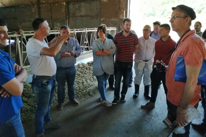 Método Obsalim: Vacas que producen máis leite e que enferman menos