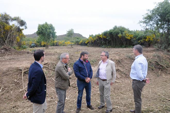 Comezan os traballos para poñer en produción 250 hectáreas abandonadas de Cualedro