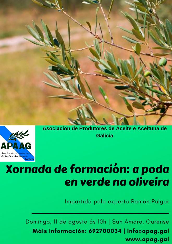 Cartel-curso-APAG-oliveira-