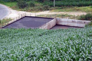 La granja ubicó las fosas de purín cerca de la mayoría de fincas.