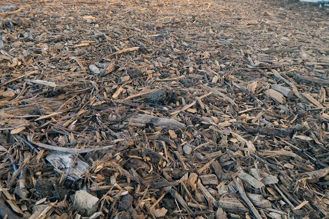 Para comezar a facer o compost deposítase unha base de anacos de madeira recén cortada