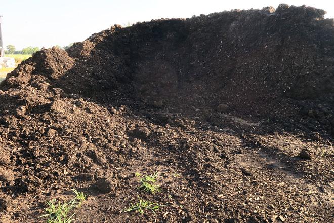 O compost sacado unha vez ao ano da cama das vacas en produción é almacenado para botar na terra