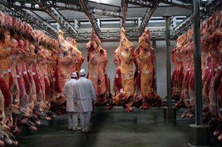 Frigoríficos Bandeira exporta un 27% da súa carne a Holanda e outros países europeos
