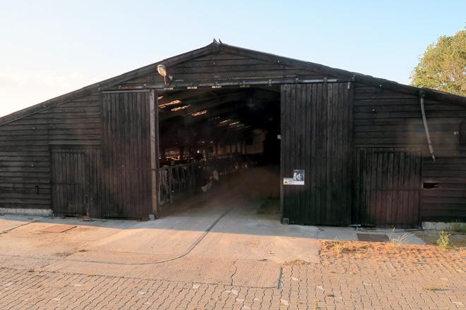 O establo vello, que agora acorre a recría está construido en madeira