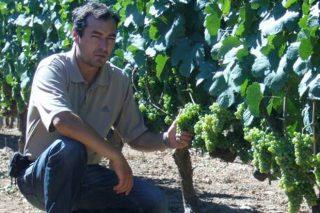 «Los pequeños viticultores somos auténticos sufridores del viñedo, pero no nos rendimos»
