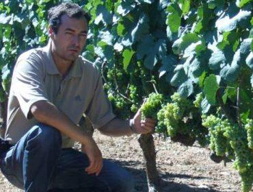 """""""Os pequenos viticultores somos auténticos sufridores do viñedo, pero non nos rendemos"""""""
