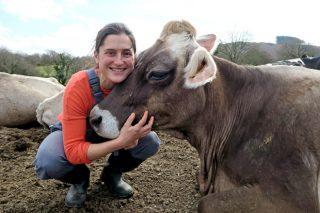 Gandería A Cernada, a ilusión por continuar transformando leite ecolóxico