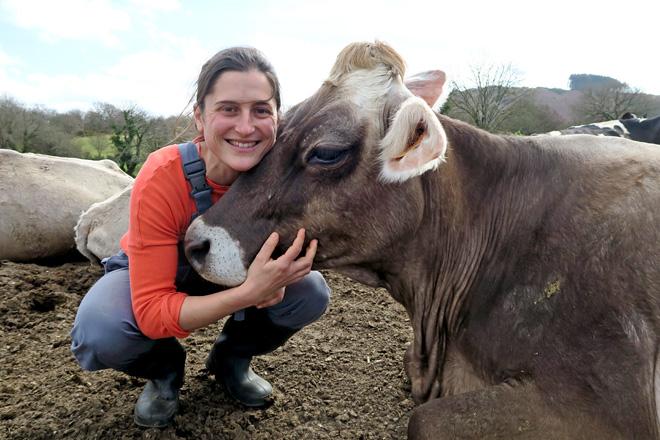 Ana Corredoira cunha das súas vacas pardo alpinas