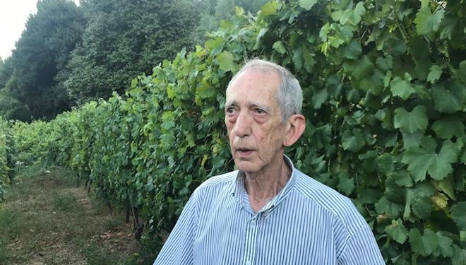 """""""Na súa primeira viaxe a América, Cristóbal Colón levaba viño do Ribeiro"""""""