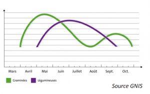 Crecemento de gramíneas e leguminosas ao longo do ano