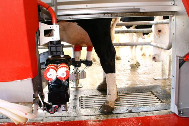 RobotExpert: máxima eficiencia en ordeños robotizados