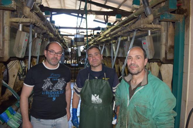 SAT Lixeiro: Camino de las 300 vacas en ordeño y con 43 litros de producción