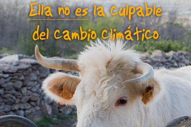 VACAS CAMBIO CLIMÁTICO 3 standar