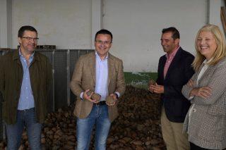 Galicia logra ser autosuficiente en producción de sementes forestais de gran calidade