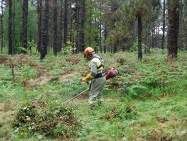 A Xunta autoriza as rozas e os traballos de mantemento e limpeza nos montes
