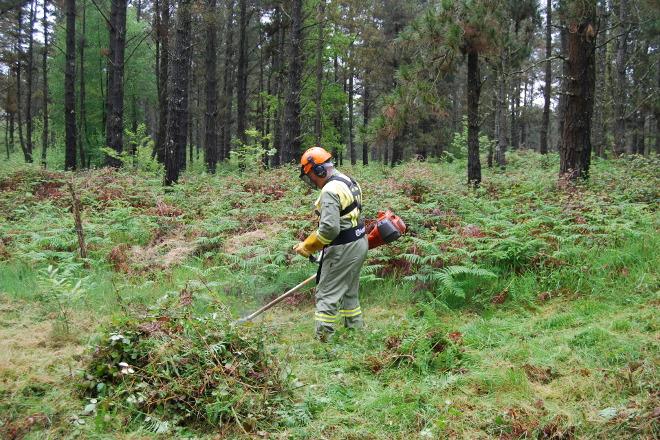 La Xunta refuerza la prevención en la lucha contra los incendios y adapta el operativo a la emergencia de la Covid-19
