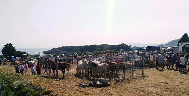 feira de gando de Cangas 20182