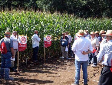 Mouriscade celebra o X aniversario do seu convenio con LG