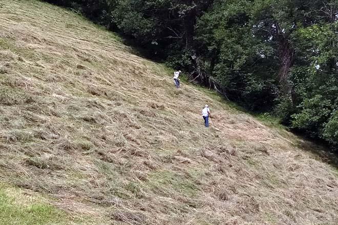 Segundo e un veciño nas labores de sega dun prado próximo a Deva. / Imaxes da sega: David López.