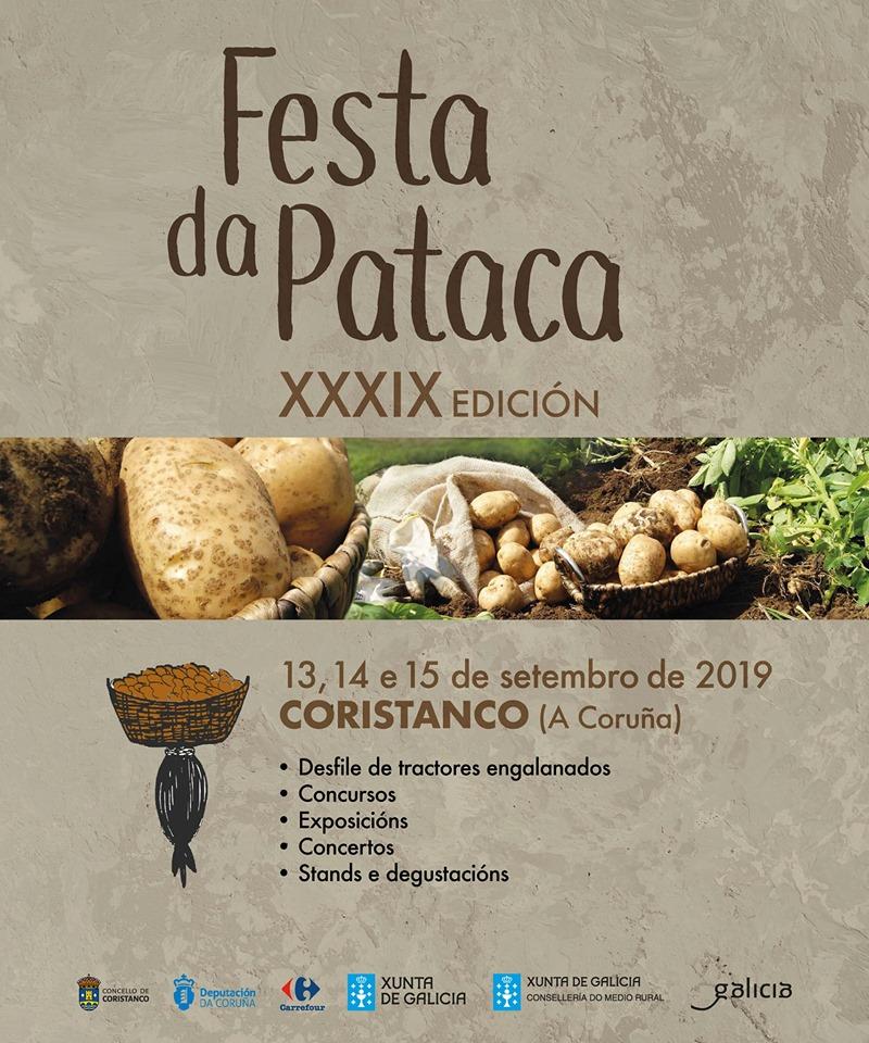 cartaz festa da pataca