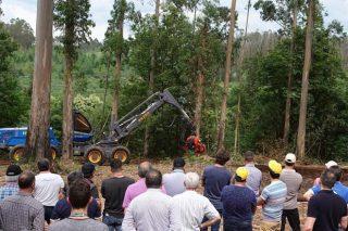 """Perfil do silvicultor galego, é reticente a plantar piñeiro e cre que o eucalipto """"non é malo"""""""