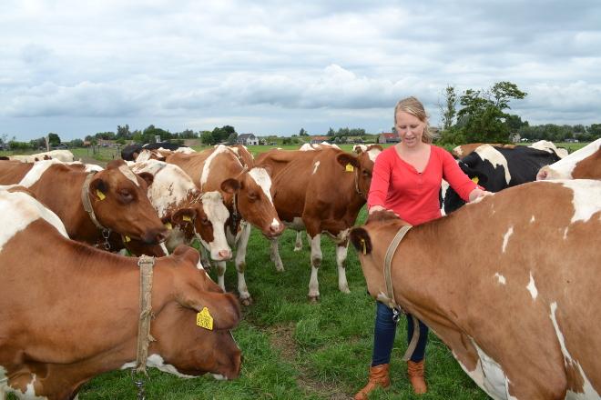 Leanne con sus vacas de raza Holstein Roja